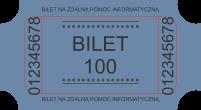 Usługi informatyczne bilet 100zł