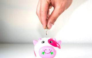Pracownicze Plany Kapitałowe oszczędzanie emerytura
